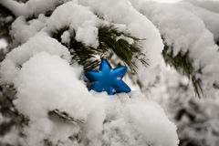 Blue Star on Christmas Tree Covered with Snow Royalty Free Stock Photos