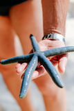 Blue starfish holding in man`s hand, Blue starfish found on the white coral sand beach in boracay Philippines. ocean coast Stock Photography