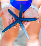 Blue starfish holding in woman hand, Blue starfish found on the white coral sand beach in boracay Philippines. ocean coast Royalty Free Stock Photography
