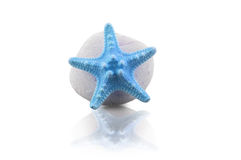 Blue starfish and pebble Royalty Free Stock Photo