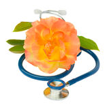 Blue stethoscope with rose Stock Images