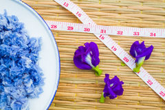 Blue sticky Rice made from Butterfly Pea flower(Asian pigeonwing Royalty Free Stock Images