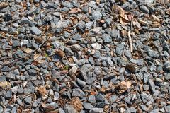 Driveway gravel mixed with leaves and twigs royalty free stock photos