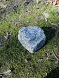Blue stone on moss royalty free stock photography