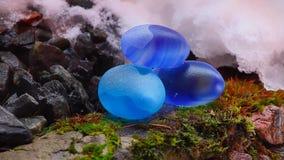 Blue Stones Meditation Spring fog. Nature snow stock video footage