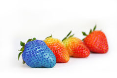 Blue strawberry Royalty Free Stock Photo