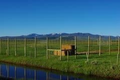 Blue stream and ranchland near Walden, Colorado. Blue stream and ranchland near Walden in Colorado Royalty Free Stock Photos