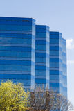 Blue Striped Glass Building Past Trees Royalty Free Stock Image