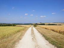 Blue summer sky over patchwork fields and ripening cereal crops Royalty Free Stock Photos