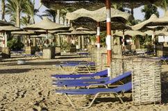 Blue sun loungers on the beach. Stock Photos