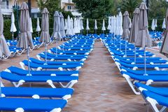 Sunbeds near the pool. Blue Sunbeds near the pool stock images