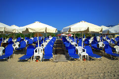 Blue sunbeds on sandy beach Stock Photos