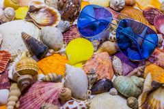 Blue sunglasses on background of colorful seashells. Concept of preparing to vocational rest. Concept of summer relaxing stock photo