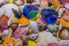 Blue sunglasses on background of colorful seashells. Concept of preparing to vocational rest. Concept of summer relaxing stock image
