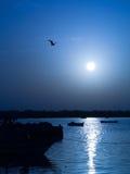 Blue Sunrise. Sunrise in Djerba Island, Tunisia Royalty Free Stock Images