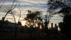 Blue  sunset. The  last  sunshine Royalty Free Stock Photo