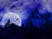 Blue sunset on scarry place. With wolf howling at moon and old castle Stock Image