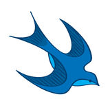 Blue Swallow Stock Photo