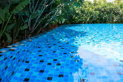 Blue swimming pool around with landscaping green garden. Nature Royalty Free Stock Images