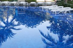 Blue swimming pool of resort in a daytime. Blue swimming pool of resort in a daytime and reflection of shadow coconut trees on the surface Royalty Free Stock Photos