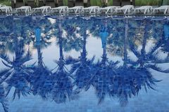 Blue swimming pool of resort in a daytime. Blue swimming pool of resort in a daytime and reflection of shadow coconut trees on the surface Stock Image
