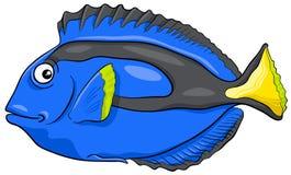 Blue tang fish character. Cartoon Illustration of Surgeonfish or Blue Tang Fish Sea Life Animal Character Royalty Free Stock Photography
