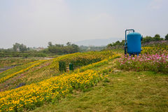 Blue tank on blossoming hilltop Royalty Free Stock Photo