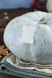 Blue or Teal Colored Pumpkin with Blank Tag Royalty Free Stock Image