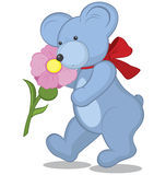 Blue Teddy bear with flower Royalty Free Stock Images