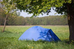 Blue tent under the tree Royalty Free Stock Photos