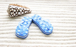 Blue thongs Stock Image
