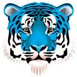 Blue tiger head. Vector illustration of blue tiger head Royalty Free Stock Photo