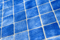 Blue tile pattern in swimming pool Stock Image