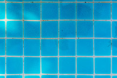 Blue Tile of Swimming Pool Royalty Free Stock Photos