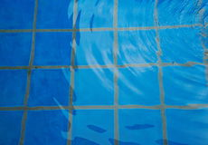 Blue tiles in swiming pool wit water wave Stock Photos
