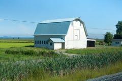 Blue tin roofed barn on prairie. Barn with blue roof on farm near mountains Royalty Free Stock Photos