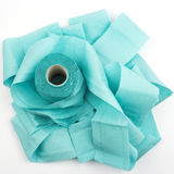 Blue toilet paper Stock Image