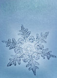 Blue Tone Snowflake. Single snowflake on blue glazed surface stock photography
