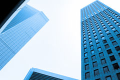 Blue toned skyscrapers Stock Images