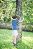 Blue top boy is hugging the tree Royalty Free Stock Photography