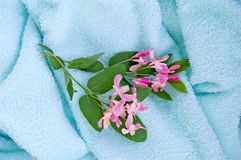 Blue towel_1 Royalty Free Stock Images