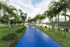 Blue track at the green garden. Beautiful blue track at the green garden Stock Image