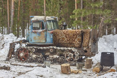 Blue tractor in pine tree forest Royalty Free Stock Images
