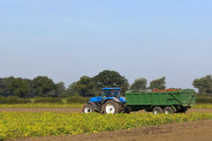 Blue tractor and trailer. Landscape with a blue tractor towing a green trailer full of red potatoes Stock Photos