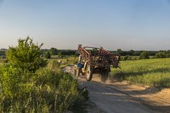 A blue tractor with a trailer for agricultural works rides along a road in a wheat field. stock images