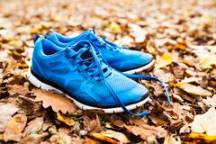 Blue trainers on colorful leaves on the ground. Autumn nature Stock Photos
