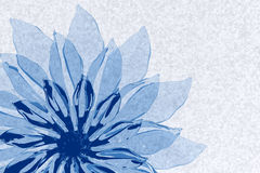 Blue transparent flower Stock Image