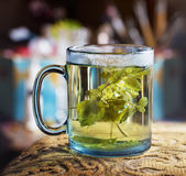 Blue transparent glass of hot tea with lemon balm Royalty Free Stock Photography