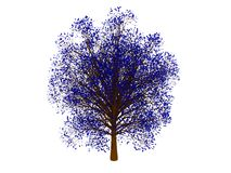 Blue tree Stock Images