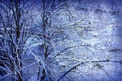 Blue tree background Royalty Free Stock Photo